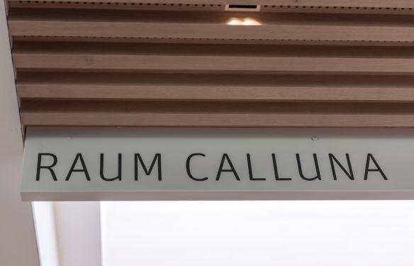Tagungsraum Calluna